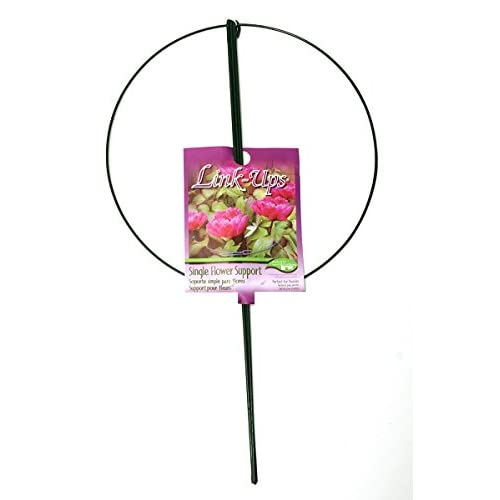 "Luster Leaf # 987 18"" D x 30"" T Green Steel Single Ring Peony Hoop / Plant Supports - Quantity 8"