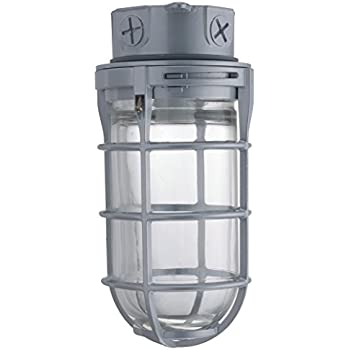 Amazon Com Canarm Ceiling Wall Barn Light With Cage