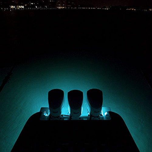 Lumitec SeaBlazeX 101140, LED Underwater Boat Light, Surface Mount, White, White Cross Fade, White Strobe by Lumitec (Image #5)