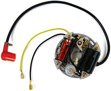 Lichtmaschine 6v 17w Zündung Ersatzteil Für Kompatibel Mit Bosch Puch Kreidler Sachs Zundapp Ktm Stecker Auto