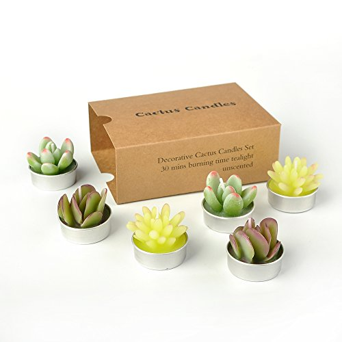 Cactus Tealight Candles,SanSeng Handmade Delicate Succulent Cactus Candles for Birthday Party ,Wedding, Spa, Home Decoration (6 pcs in Pack) (plant candles)