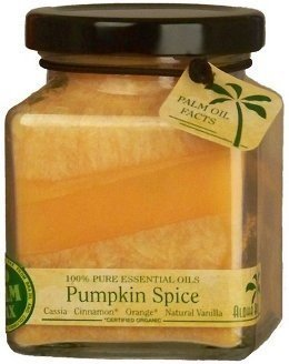 Aloha Bay Pumpkin Spice Eco Palm Wax (Eco Spice)