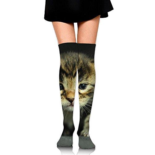 kitten dressed up - 5