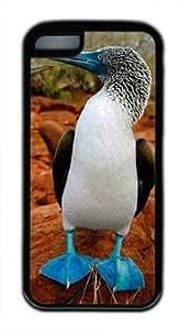Diy iPhone 6 plus Beautiful Bird DIY Rubber BlackIphone 6 plus Perfect By Custom Service