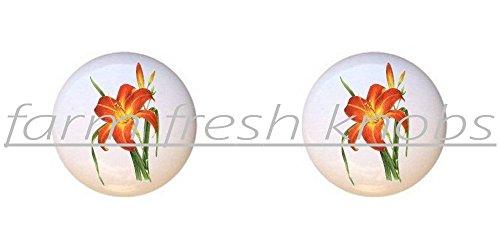 SET OF 2 KNOBS - Daylily Orange - Flowers Plants Flower Bouquet Floral - DECORATIVE Glossy CERAMIC Cupboard Cabinet PULLS Dresser Drawer KNOBS