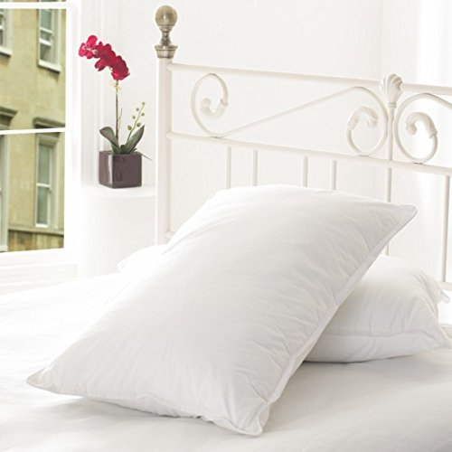 SleepyNights Love2Sleep ULTRA FIRM HOLLOWFIBRE NON ALLERGENIC PILLOW : TWO PILLOWS