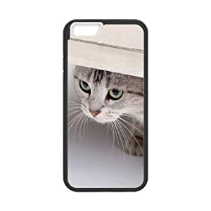 Fashion Carton cat Personalized iPhone 6 Case Cover