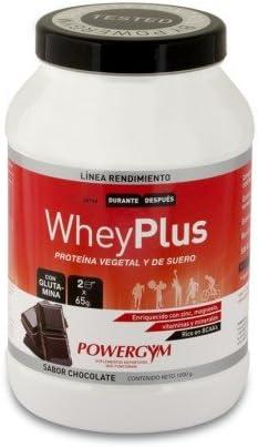 Powergym Whey Plus Chocolate 1Kg. (100% Whey Protein & soia ...
