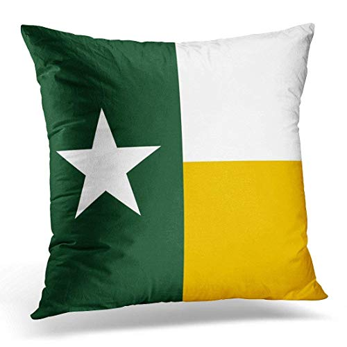 SHrnPillowcase Baylor Green and Gold Texas Decorative Pillow Case Home Decor Square 18x18 Inches Pillowcase