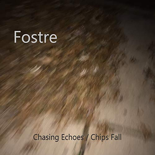 Chasing Echoes / Chips Fall ()