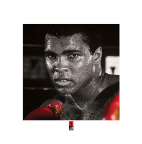 Muhammad Ali Gloves Celebrity Sports product image