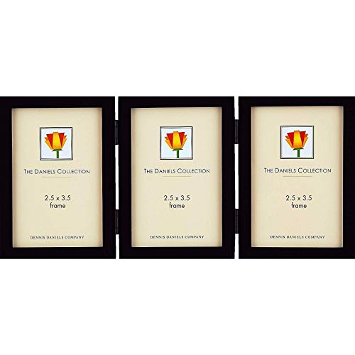 Dennis Daniels Gallery Woods Hinged Triple Vertical Picture Frames, 2.5 x 3.5 Inches, Ebony