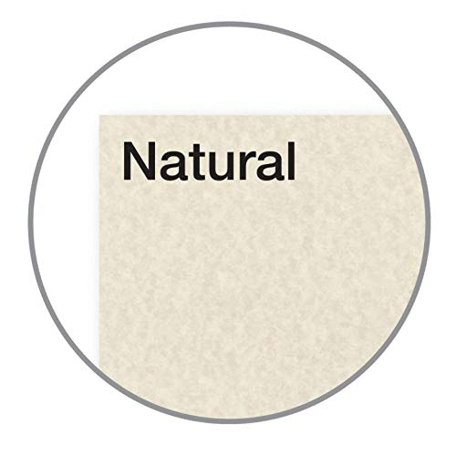 Astroparche Specialty Cover Stock, 8 1/2'' x 11'', 65 Lb, 30% Recycled, Astroparche Natural, Pack of 250 Sheets by Astroparche