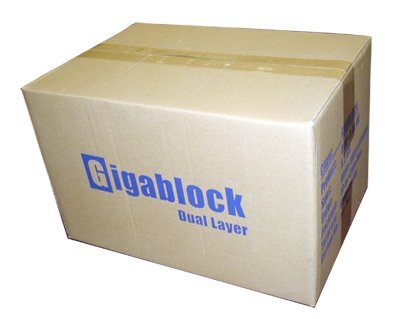 600pcs (1 carton) Gigablock DVD+R 8x Dual Layer 8.5GB/240min Logo Printed Premium Quality by Gigablock