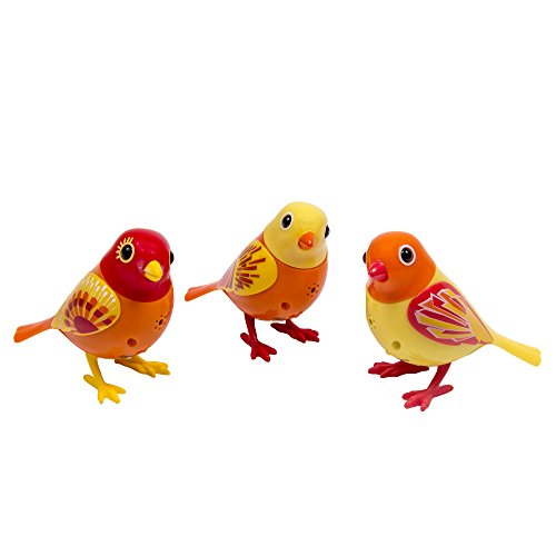 [DigiBirds - 3 Pack Set of DigiBirds - Orange Set] (Animal That Starts With J)