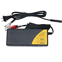 HoneyCare 48V Sealed Lead Acid Battery Charger,SLA AGM Gel VRLA Battery Charger with Fuel Gauge,MCU Control,with Recovery Function Charger for Scooter,Electric Bike (48V Lead Acid Battery Charger)