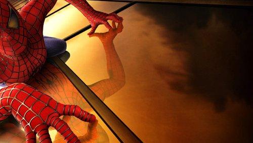 Sony PlayStation PS Vita Decorative Video Game Skin Spiderman