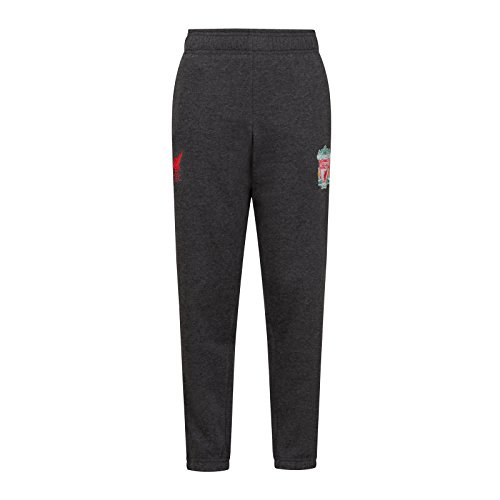 Liverpool FC Official Gift Boys Slim Fit Fleece Joggers Jog Pants Grey 12-13 Yrs (Pants Jog Fleece)