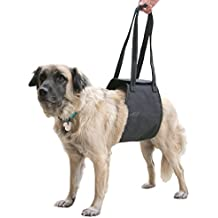 Max and Neo Dog Lift Support and Rehab Harness for Dogs with Weak Rear Legs - We Donate a Harness to a Dog Rescue for Every Harness Sold (Medium, Black)