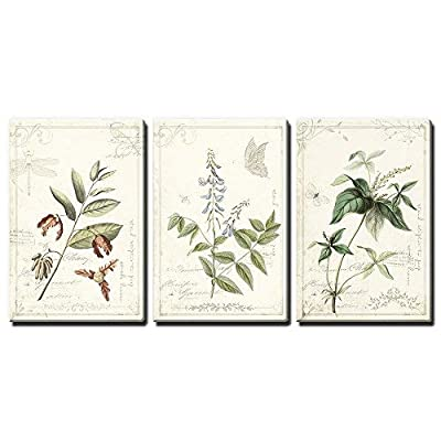 That You Will Love, Marvelous Print, 3 Panel Vintage Style Plant Leaves and Flowers x 3 Panels