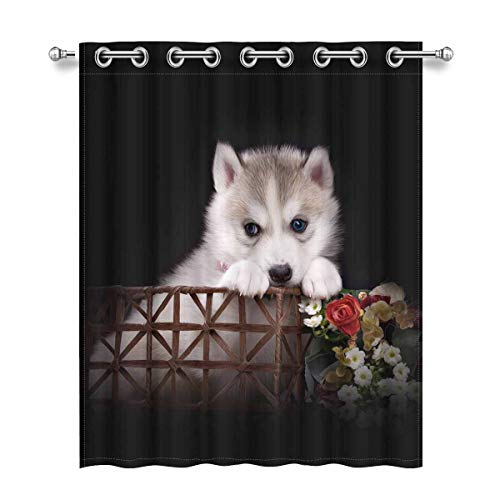 InterestPrint Husky Dog Puppy One Month Old in a Basket 52X63 Inch Room Darkening Thermal Insulated Curtain Grommet Window Curtain for Kitchen