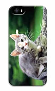 iPhone 5 3D Hard Case White And Gray Kitten