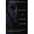 What It Was Like: A Novel of Love and Consequence