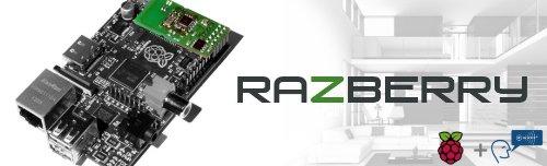 Z-Wave.Me RaZberry - Z-Wave Plus GPIO Card for the Raspberry Pi