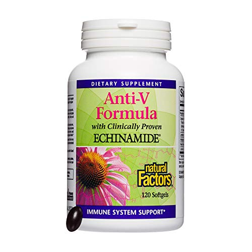 Natural Factors, Anti-V Formula, Supports Immune System Health with Echinamide, Reishi Mushroom and Astragalus, 120 softgels (120 Servings)