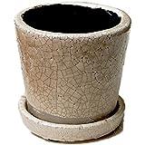 [DULTON]ダルトン Color grazed pot S テラコッタ 陶器鉢 CH15-G527 IVORY