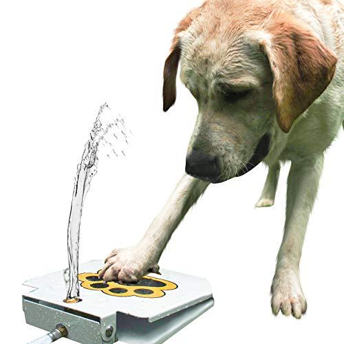 (Dog Water Fountain Sprinkler Dispenser with Free Dog Massage)
