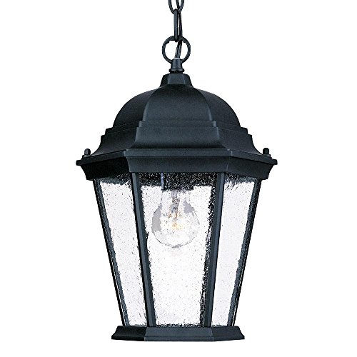 Acclaim 5206BK/SD Richmond Collection 1-Light Outdoor Light Fixture Hanging Lantern, Matte Black