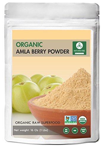 Amla Berry Powder (1lb) by Naturevibe Botanicals - Organic Gluten-Free, Raw & Non-GMO (16 Ounces)