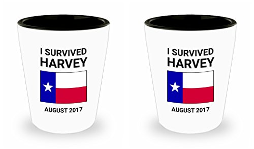 Harvey Hurricane Survivor Shot Glass Set of 2 I Survived the Storm Texas 2017 August Gift Twin Pair Ceramic Standard 1.5 oz with Lone Star State Flag