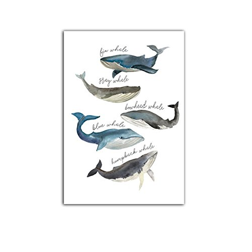 Aland Unframed Art Watercolor Style Whale Wall Decorative Painting Modern Home Decor 40cm x 50cm