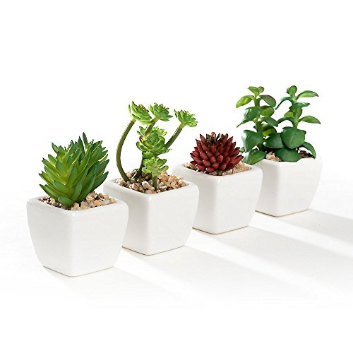 Nattol Set of 4 Different Mini Artificial Succulent Plants Potted in Cube-Shape White Ceramic Pots for Home Decor (White Artificial Pot)