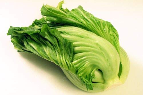 Chinese Indian Mustard (GAI Choy, GAI Choi) Cabbage 100 Seeds by AirGarden