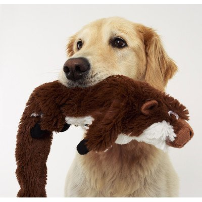 Bottle Critters Groundhog Dog Toy