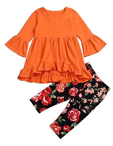 Little Girls Spring Colors Florals Summer Outfit Set Short Sleeves Top and Floral Pant 2 Pcs Set (6-12 Months) Orange