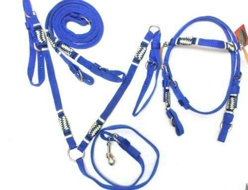 - D.A. Brand Poly w/Braided Rawhide Trim Bridle w/Breast Collar Horse Tack(Royal Blue Pony)