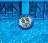 NiteLighter 100 Watt Multicolor Above Ground Pool Light