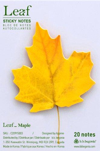 b b begonia Leaf Maple Sticky Notes product image