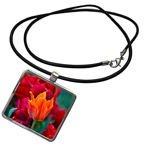 3dRose Alexis Photography - Flowers Tulips - Red Tulip Flower, Scarlet, Green Background. Springtime Beauty - Necklace with Rectangle Pendant (ncl_296343_1)
