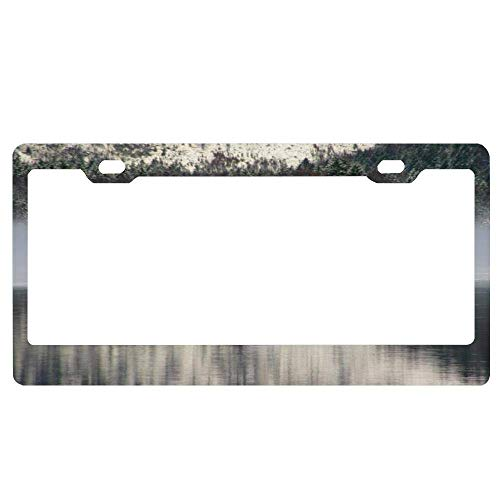 YEX Abstract ALM-Lake Austria License Plate Frame Car License Plate Covers Auto Tag Holder 6