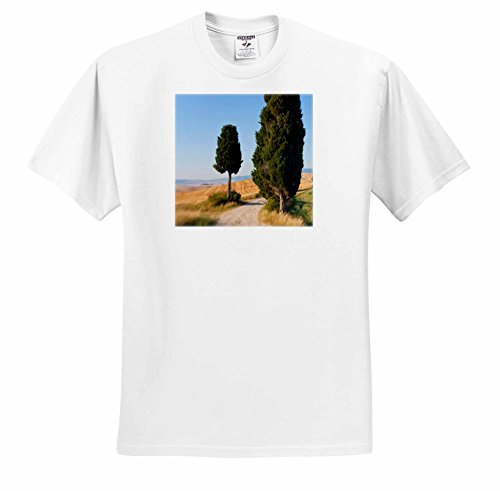 ts-227671-danita-delimont-italy-winding-road-val-d-orica-tuscany-italy-t-shirts