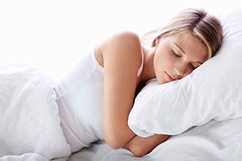 Digital Decor Set of Two Down-Alternative Pillows