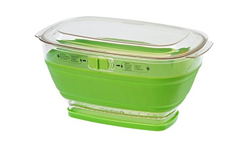 Food Network 4-Quart Collapsible Produce Fruit Veg Keeper Holder Storage Box