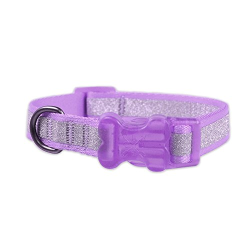 Glam Collar (Bow & Arrow Adjustable Nylon Dog Collar with Sparkly Silver Glitter Stripe, Lavender, X-Small)