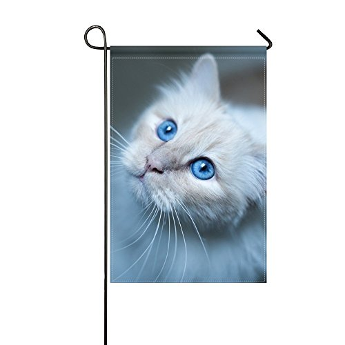 DongGan Garden Flag Burmese Cat Muzzle Blue 12x18 Inches(Without Flagpole)