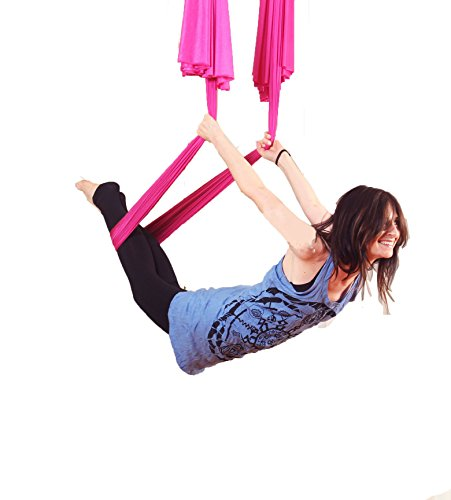 Dasking Premium Aerial Yoga Hammock Kit (Pink) - Buy ...
